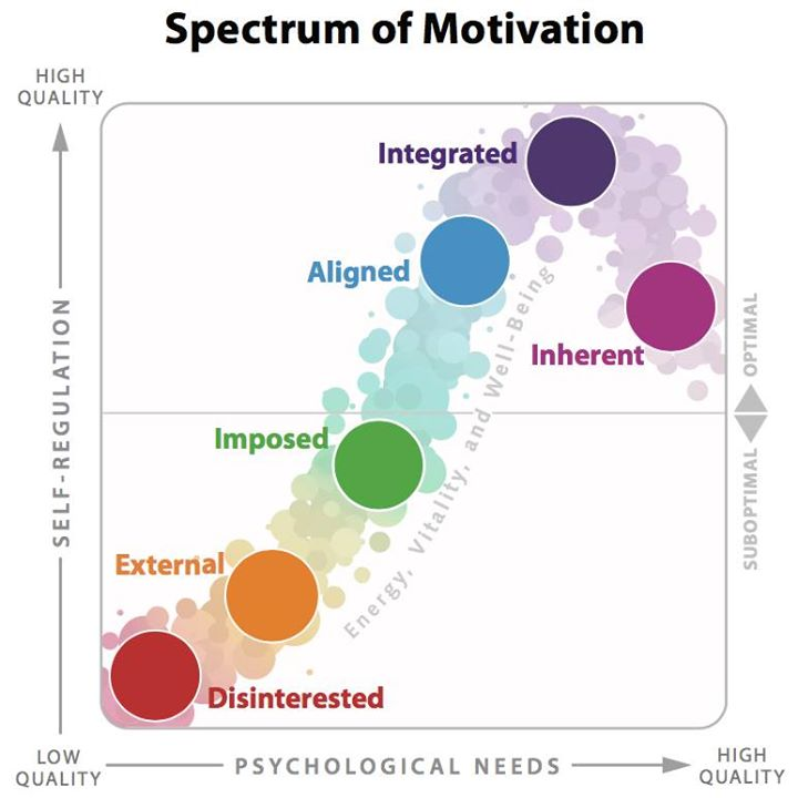 Spectrum of motivation model
